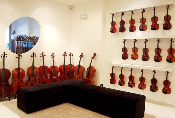 An elegant gallery showcasing a fine collection of strings